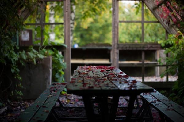 Löv på bordet